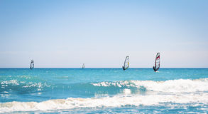 Windsurfing sails on the blue sea Royalty Free Stock Photos