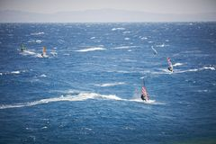 Windsurfing sails on the blue sea Royalty Free Stock Image