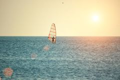 Windsurfing on the sea surface at sunset in the sun, the concept of outdoor activities stock photography