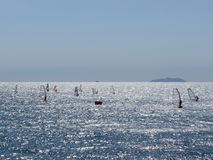 Windsurfing in the sea . Windsurfers silhouettes royalty free stock images