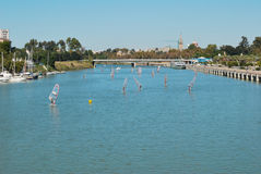 Windsurfing in Sevilla-Fluss Stockfotos