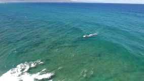 Windsurfing in white foamy waves crashing in calm turqiose blue tropical ocean water in 4k aerial drone seascape view. Windsurfing in white foamy waves crashing stock video