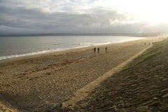 Windswept beach Stock Photos