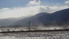 Windswept field in winter stock footage