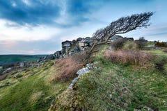 Windswept Moors Stock Photos