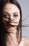 Windswept mystery. Royalty Free Stock Images