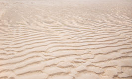 Windswept patterns on the beach Royalty Free Stock Photography