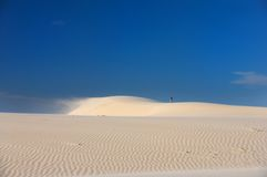 Windswept sand dunes on a blue sky Stock Photography