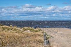 Windswept Sea royalty free stock photo