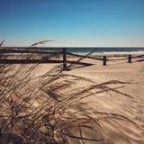 Windswept Strand Stockbild
