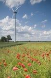 WindTriebwerkanlage und Mohnblumen lizenzfreies stockfoto