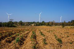 Windturbine en Landbouw Stock Foto