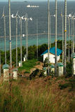 Windturbine in koh lan, pattaya, thailand Stock Image