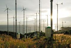 Windturbine in koh lan, pattaya, thailand Royalty Free Stock Image