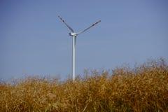 Windturbine at sunny day Stock Photos