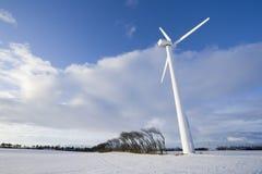 Windturbine und windige Bäume Stockbild