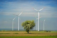 Windturbinen auf dem grünen Gebiet Stockfotografie