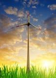 Windturbinen auf dem grünen Gebiet Stockfoto