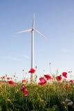 Windturbinen auf dem Maisgebiet Stockbilder