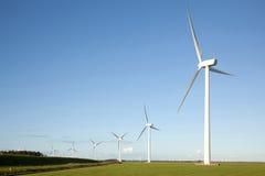 Windturbinen auf dem Maisgebiet Stockbild
