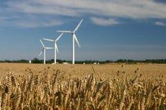 Windturbinen auf den Gebieten Lizenzfreies Stockbild