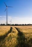 Windturbinen auf einem Feld Stockbild