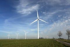 Windturbinen auf einem Gebiet. Lizenzfreies Stockbild