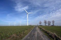 Windturbinen auf einem Gebiet. Stockfotografie