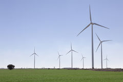 Windturbinen auf Feld des grünen Grases Stockfotografie