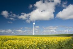 Windturbinen in der Wiese Lizenzfreies Stockbild