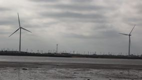 Windturbinen, gelbes Feld stock video