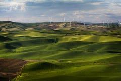 Windturbinen, gelbes Feld Stockbilder