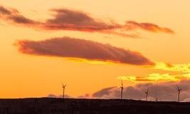 Windturbinen, gelbes Feld Lizenzfreies Stockbild