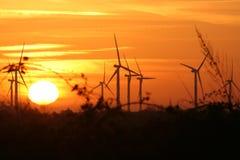 Windturbinen am Sonnenuntergang Lizenzfreies Stockbild