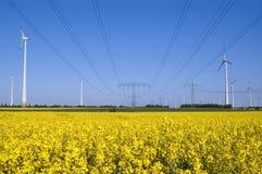 Windturbinen und Rapssamenfeld Lizenzfreies Stockfoto