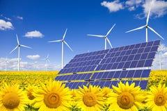 Windturbinen und -Sonnenkollektoren auf Sonnenblumefeld Stockbild