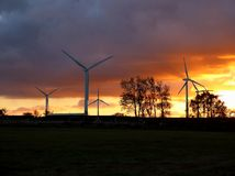 Windturbiner på solnedgången royaltyfri foto