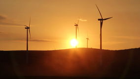 Windturbiner på solnedgången stock video