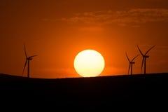 Windturbiner på solnedgången Royaltyfri Fotografi