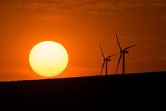 Windturbiner på solnedgången Royaltyfria Bilder