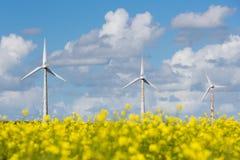 Windturbines за желтым coleseed полем Стоковые Изображения RF