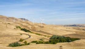 Windturbines in de de Rivierkloof van Colombia Stock Afbeeldingen