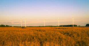 Windturbines at dusk Royalty Free Stock Image