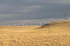 Windturbines en machtslijn op geel gebied, weide, vóór regen Het landbouwbedrijf van de wind De V.S. Royalty-vrije Stock Foto
