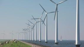 Windturbines im Wasser mit einem klaren blauen Himmel stock video