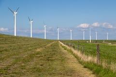 Windturbines lungo una diga nei Paesi Bassi vicino ad un'autostrada Fotografia Stock Libera da Diritti