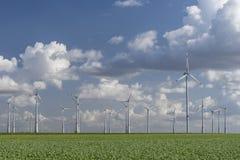 Windturbines met blauwe bewolkte hemel Stock Foto