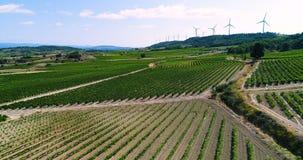 Windturbines op een heuvel met gebieden en wijnstokken stock footage