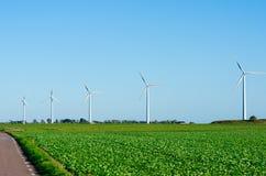 Windturbines op gebied Royalty-vrije Stock Foto