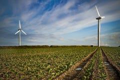 Windturbines op landbouwgrond in vroeg avondzonlicht Royalty-vrije Stock Afbeeldingen